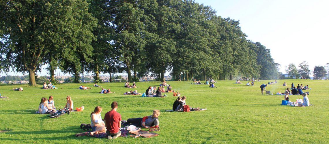 Durante la primavera los picnis son comunes en Inverleith Park